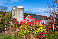 Colorful autumn farm, Jeffersonville, Vermont, USA.
