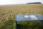Information panel about Cuckoo Stone field Durrington, Wiltshire, England, UK