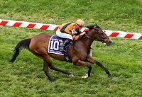 BALTIMORE, MD - MAY 20: Cambodia  #10, ridden by Florent Geroux, wins the Gallorette Stakes on Preakness Stakes Day at Pimlico Race Course on May 20, 2017 in Baltimore, Maryland.(Photo by Dan Heary/Eclipse Sportswire/Getty Images)