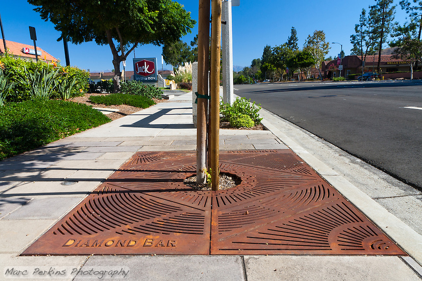 "Iron tree grates form the base of most of the trees planted for the Grand Avenue Beautification project.  This one has a Jack in the Box sign in the background, and lots of street visible. This was part of the 2015 rebuild of the Grand Avenue and Diamond Bar Boulevard intersection for Diamond Bar's 2015 ""Grand Avenue Beautification"" project, landscape architecture for the project was by David Volz Design."