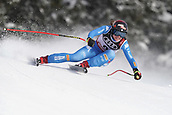 10th February 2019, Are, Sweden; Alpine skiing: Combination, ladies: downhill; Nicol Delago from Italy on the racetrack.