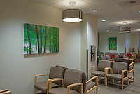 Overlake Hospital Pulm - Internal Medicine Clinic artwork - Lobby