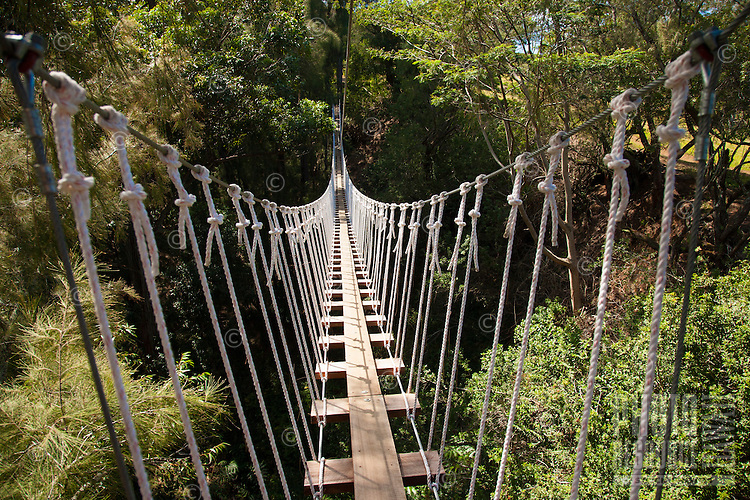 One of the many bridges between platforms while Ziplining on the Big island with Kohala zipline