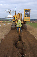 Contractors Sweeting Brothers draining 8 acres of Trevor Watson's land at Shiptonthorpe, Market Weighton, East Yorkshire.The plastic pipe is covered with a filter wrap, because of the sandy subsoil,  and layed at a depth of 1.3 metres. In good conditions the machine can lay 3,000 metres of pipe but 1,500 metres is average.