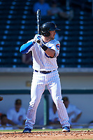 Mesa Solar Sox first baseman Ian Rice (56), of the Chicago Cubs organization, at bat during an Arizona Fall League game against the Glendale Desert Dogs on October 28, 2017 at Sloan Park in Mesa, Arizona. The Solar Sox defeated the Desert Dogs 9-6. (Zachary Lucy/Four Seam Images)