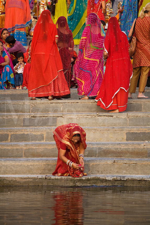 A Rajasthani woman washes rose petals at the GANGAUR GHAT on the shore of PICHOLA LAKE for the GANGAUR FESTIVAL or MEWAR FESTIVAL - UDAIPUR, RAJASTHAN, INDIA