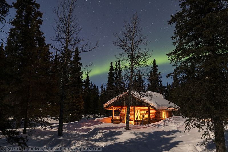 The northern lights arc over a log cabin in the winter boreal forest of the Alaska Range mountains in Interior, Alaska.