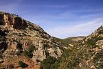 Israel, Wadi Namer in the Upper Galilee