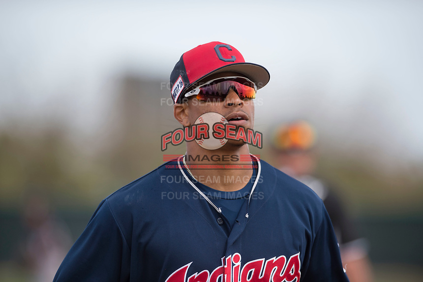 Cleveland Indians center fielder Quentin Holmes (70) during a Minor League Spring Training game against the Chicago White Sox at Camelback Ranch on March 16, 2018 in Glendale, Arizona. (Zachary Lucy/Four Seam Images)
