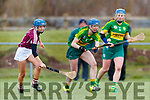 Oliva Dineen Kerry in action against Amy Cully Westmeath in the 2019 Camogie League Division 2 at John Mitchells GAA grounds in Tralee, on Sunday.