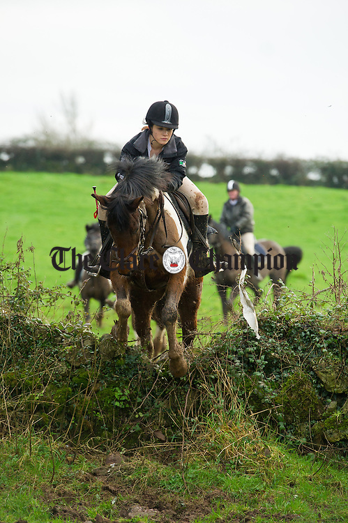 Up and over at the East Clare farmers Hunt in Doonass, Clonlara. Photograph by John Kelly.