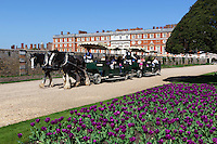 Great Britain, England, London: Hampton Court Palace. Horse drawn carriage tour around the gardens with the baroque palace behind | Grossbritannien, England, London: Hampton Court Palace, mit der Pferdekutsche durch den Park und der barocke Palast designed von Sir Christopher Wren im Hintergrund