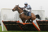 Race winner Glorious Twelfth ridden by A P McCoy in jumping action in the Connollys Red Mills Horse Cooked Mix Mares Maiden Hurdle
