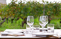 Lunch table in the vineyard. Clos Saint Julien, Saint Emilion, Bordeaux, France