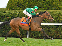 LEXINGTON, KY - APRIL 14: #7, Sistercharlie (IRE), ridden by John Velazquez, wins the G1 Coolmore Jenny Wiley at Keeneland Race Course on April 14, 2018 in Lexington, KY. (Photo by Jessica Morgan/Eclipse Sportswire/Getty Images)