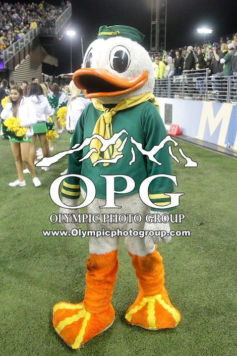 OCT 17:  Oregon's Fighting Duck against Washington.  Oregon defeated Washington 26-20 at Husky Stadium in Seattle, WA.
