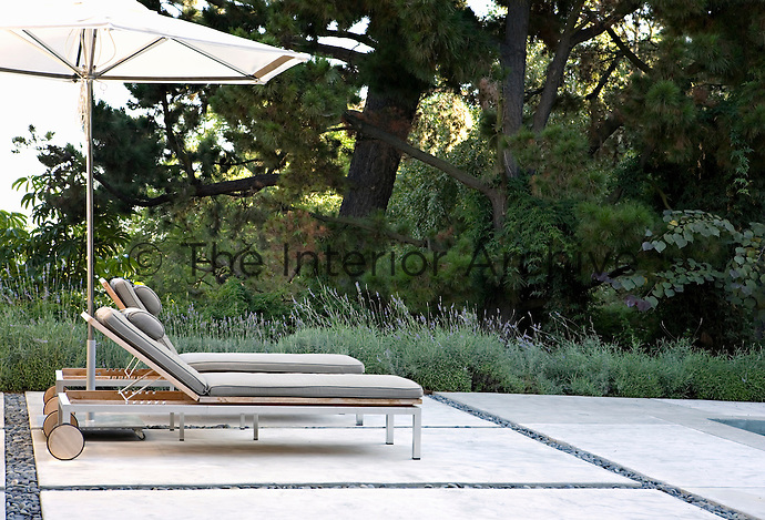 A pair of contemporary wood and metal sun-loungers on the swimming pool terrace which is bordered with lavender