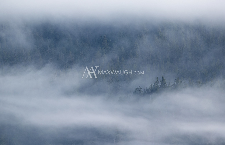 There can be some moody skies and spectacular scenery to behold in the Great Bear Rainforest.