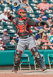 19 March 2015: Miami Marlins catcher Jhonatan Solano in Spring Training action against the Atlanta Braves at Champion Stadium in the ESPN Wide World of Sports Complex in Kissimmee, Florida. The Braves defeated the Marlins 6-3 in Grapefruit League play. Mandatory Credit: Ed Wolfstein Photo *** RAW (NEF) Image File Available ***
