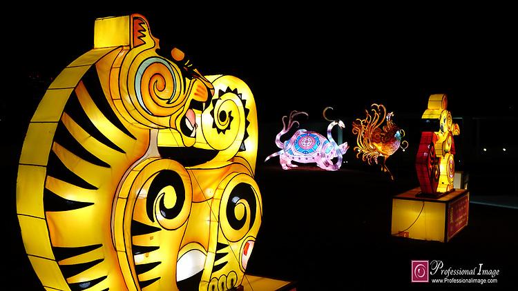 Chinese  Lunar New Year: REACH Winter Lanterns @ The REACH Kennedy Center
