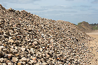 Crushed stone<br /> &copy;Tim Scrivener Photographer 07850 303986<br /> ....Covering Agriculture In The UK....