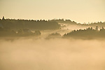 Early morning mist hangs over the valley of French River in Prince Edward Island, Canada.