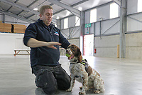 "Pictured: Scamp the sniffer dog with its owner Stuart Phillips.<br /> Re: A tobacco sniffer dog has a £25k bounty on its head according to its owner in Pembrokeshire, Wales, UK.<br /> During his five year career, Scamp the springer spaniel has sniffed out £6 million worth of illegal tobacco, thanks to his powerful sense of smell and natural hunting instincts.<br /> Owner Stuart Phillips said Scamp's success rate at sniffing out illegal tobacco hauls means he poses a big threat to the criminals who smuggle in and sell the goods.<br /> ""We had to stop working in one part of the country last year, because there was a £25,000 bounty put on his head,"" said Stuart.<br /> ""It was believed to be linked to an organised crime group and the relevant authorities were informed.<br /> ""I've also had death threats, my windscreen has been smashed and my tyres slashed,"" he added.<br /> ""It's understandable really, when you're upsetting some really nasty people."""