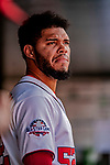 26 September 2018: Washington Nationals pitcher Jimmy Cordero looks out from the dugout prior to a game against the Miami Marlins at Nationals Park in Washington, DC. The Nationals defeated the visiting Marlins 9-3, closing out Washington's 2018 home season. Mandatory Credit: Ed Wolfstein Photo *** RAW (NEF) Image File Available ***