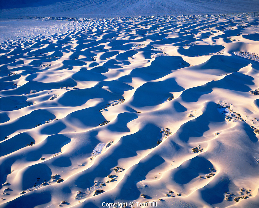 Aerial View of Mesquite Flat Dunes in Morning Light, Death Valley National Park, California