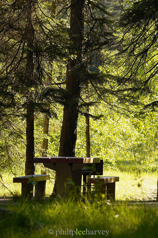 Picnic table at Yoho National Park, Rocky Mountains, British Colombia, Canada, North America.