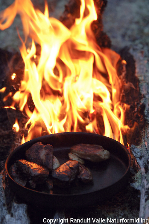 Rypebryst i stekepanne på bål ---- Grouse meat in frying pan on camp fire