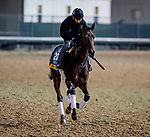 10-30-18 Breeders Cup Preparations