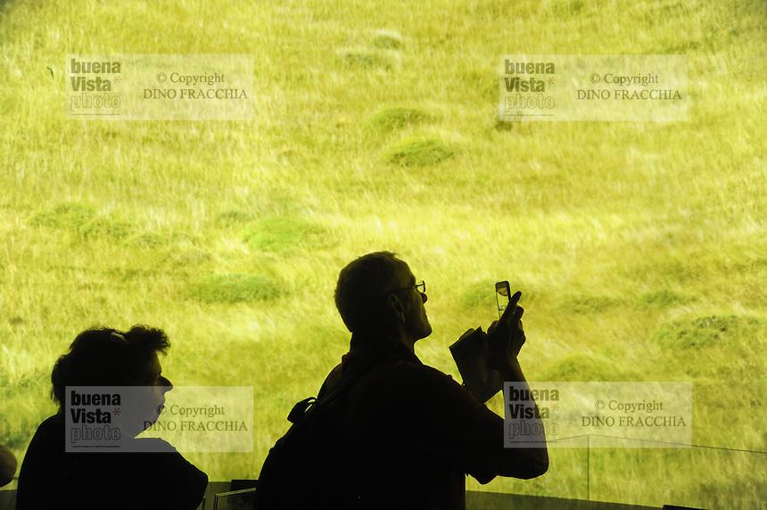 - Milano, Esposizione Mondiale Expo 2015, padiglione del Cile<br /> <br /> - Milan, the World Exhibition Expo 2015, pavillion of Chile