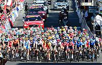 Picture by Simon Wilkinson/SWpix.com - 23/09/2017 - Cycling UCI 2017 Road World Championships Bergen Norway - Road Race <br /> Mens Junior - JOHANSEN Julius -winner RASTELLI Luca, and GAZZOLI Michele