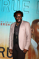 """LOS ANGELES - JAN 10:  Chad Coleman at the """"True Detective"""" Season 3 Premiere Screening at the Directors Guild of America on January 10, 2019 in Los Angeles, CA"""