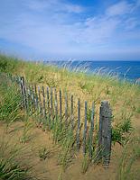 Cape Cod National Seashore, MA <br /> Fence line in the dune grasses above Marconi Beach on Cape Cod
