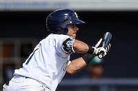 Charlotte Stone Crabs shortstop Andrew Velazquez (1) squares to bunt during a game against the Daytona Tortugas on April 14, 2015 at Charlotte Sports Park in Port Charlotte, Florida.  Charlotte defeated Daytona 2-0.  (Mike Janes/Four Seam Images)
