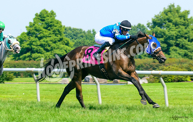 Justgimmeakiss winning at Delaware Park on 7/20/17