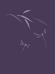 Artistic Japanese Zen illustration design of flying dragonflies and bamboo leaves in modern colors, off white on purple background