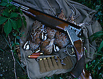 Bobwhite quail game birds with over under shotgun