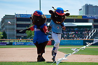 Buffalo Bisons mascots Buster T. Bison (right) and Chip participate in an on field promotion during an International League game against the Lehigh Valley IronPigs on June 9, 2019 at Sahlen Field in Buffalo, New York.  Lehigh Valley defeated Buffalo 7-6 in 11 innings.  (Mike Janes/Four Seam Images)