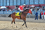 HOT SPRINGS, AR - APRIL 14:Count Fleet Sprint Handicap. Oaklawn Park on April 14, 2018 in Hot Springs,Arkansas. #2 Wings Locked Up with jockey Alex L. Canchari  (Photo by Ted McClenning/Eclipse Sportswire/Getty Images)