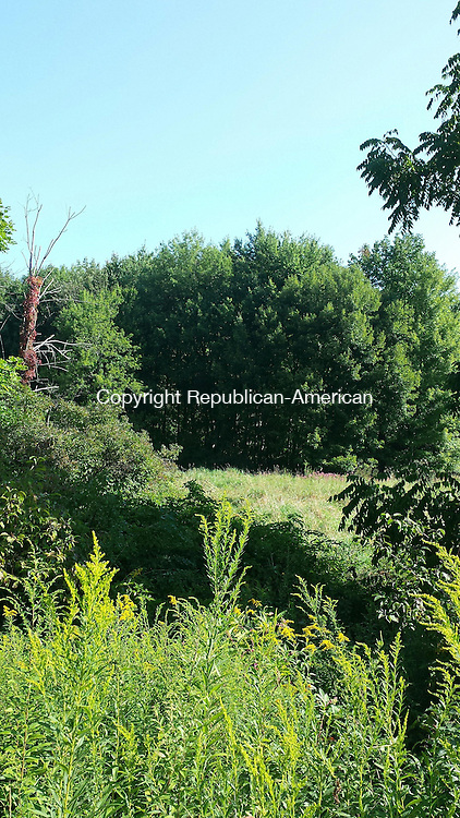 NAUGATUCK, CT - Aug. 26, 2014 - 08262014LX04 - The state has transferred a five acre parcel of land to the town to build a parking lot for a linear trail project.