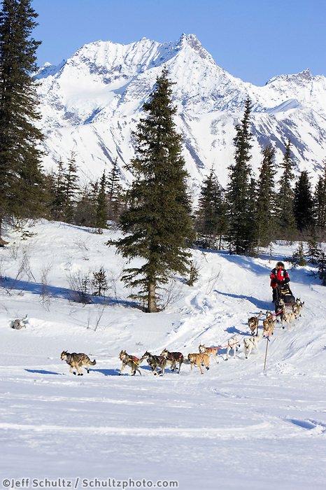 Paul Gebhardt runs down hill onto Puntilla Lake near the Rainy Pass checkpoint w/ Alaska Range in the background Iditarod 2007