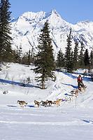 Paul Gebhardt runs down hill onto Puntilla Lake near the Rainy Pass checkpoint w/ Alaska Range in the background Iditarod 2007