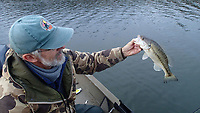NWA Democrat-Gazette/FLIP PUTTHOFF <br />Darr shows a spotted bass he caught while working a blade bait Dec. 6 2019 around a school of threadfin shad. The tactic often results in a mixed catch of white bass, black bass and striped bass.