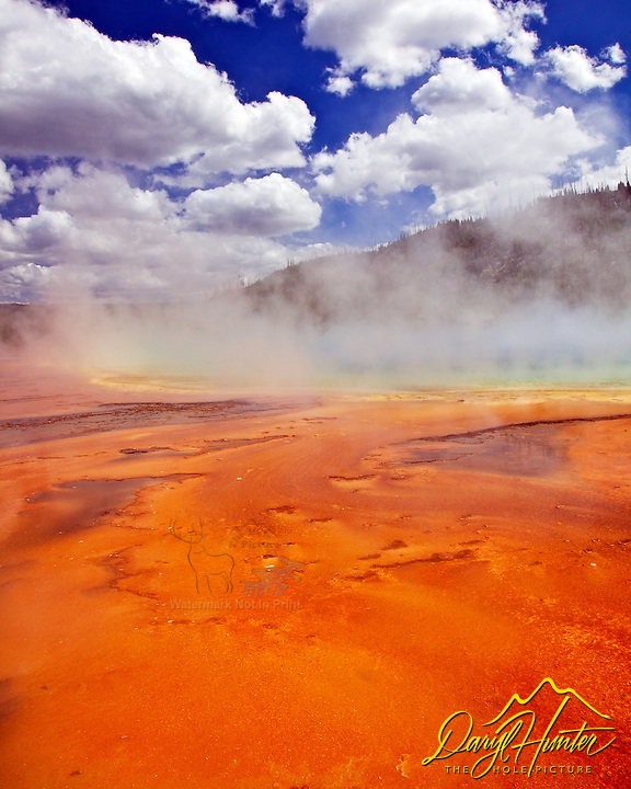 Orange Thermophiles and Grand Prismatic Spring in Yellowstone National Park is the largest hot spring in the United StatesGrand Prismatic Spring is located in the Midway Geyser Basin. Thermophiles are a bacteria that can live in water as hot as 170 degrees.