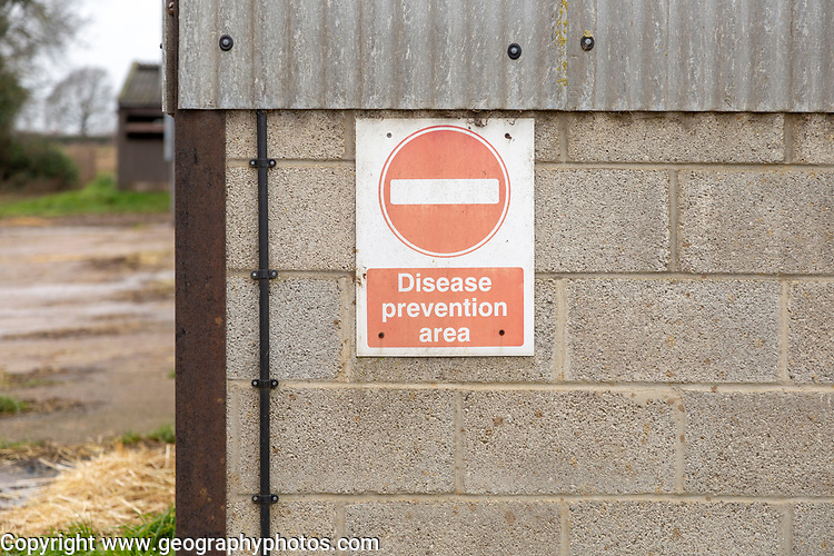 No entry diseases prevention area sign on indoor piggery unit, Sutton, Suffolk, England, UK