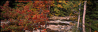 "Autumn colors beside the Cutler River in New Hampshire""s Pinkham Notch.  Photograph by Peter E, Randall"