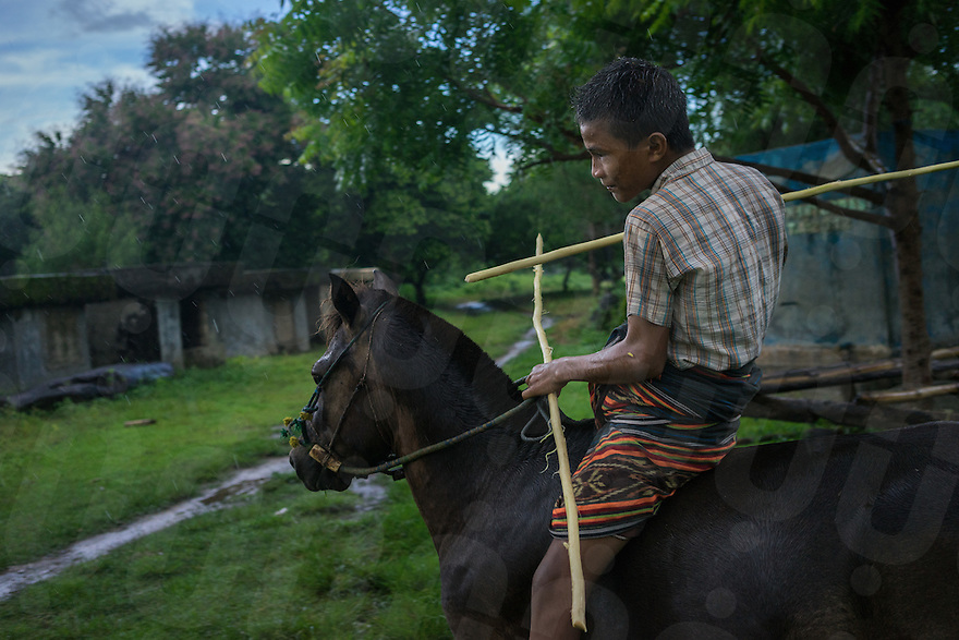 March 25, 2016 - Wainyapu (Indonesia). Peter (15) practices with the 'pasol' javelins ahead of the first Pasola that will be hold the day after in the village of Ratenggaro. Peter participated in the Pasola for the first time 3 years ago and rides a horse that belongs to his uncle. © Thomas Cristofoletti / Ruom